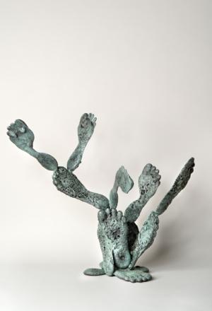 Foot Cactus